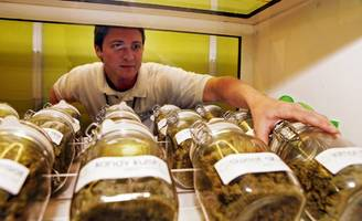 Colorado Made $3.5 Million In Taxes And Fees In First Month Of Marijuana Sales